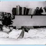 Frida Kahlo ( Capítulo 15 - Último Capítulo )