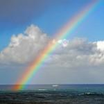 Arte y Curiosidades: ¿ Qué simboliza el arco iris en el arte ?