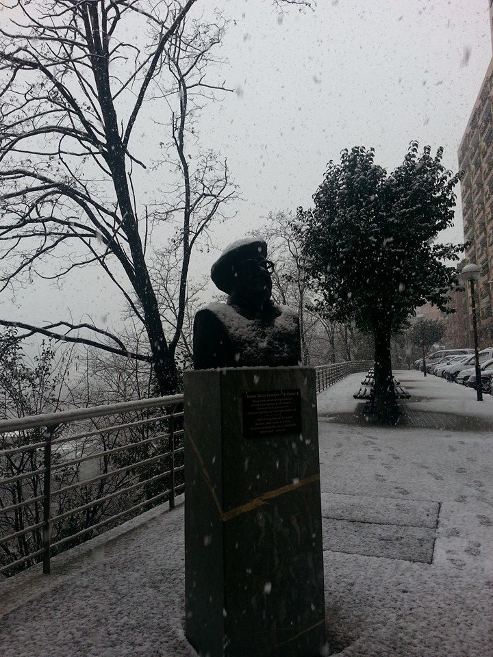 busto-txebolao-nieve-basauri-3-2-2015-inmius
