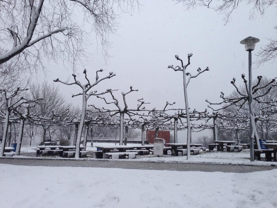 campo-de-tiro-nieve-basauri-3-2-2015-juankar-lopez