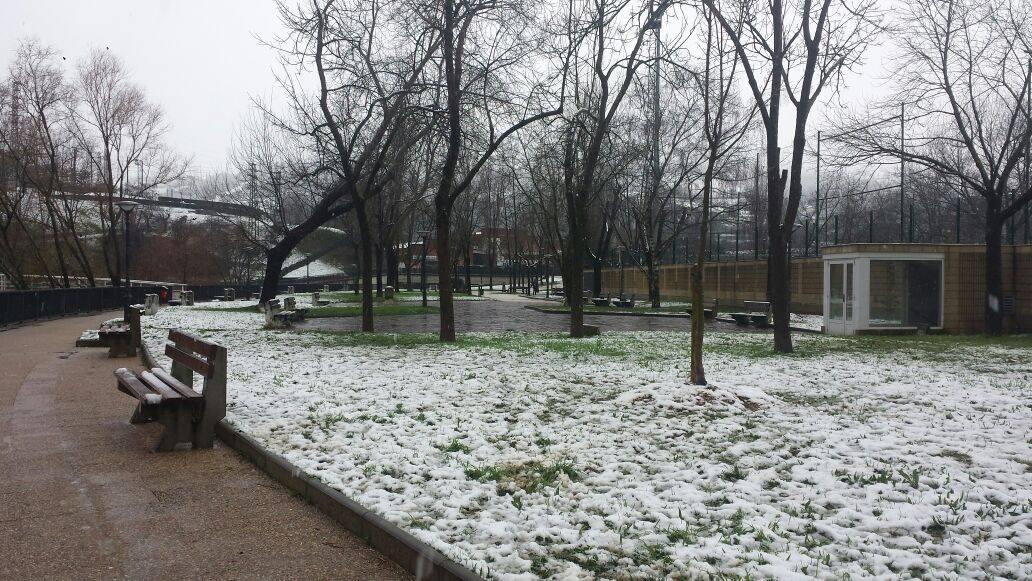 parque-soloarte-los-patos-basauri-3-2-2015-alberto-lopez-villanueva