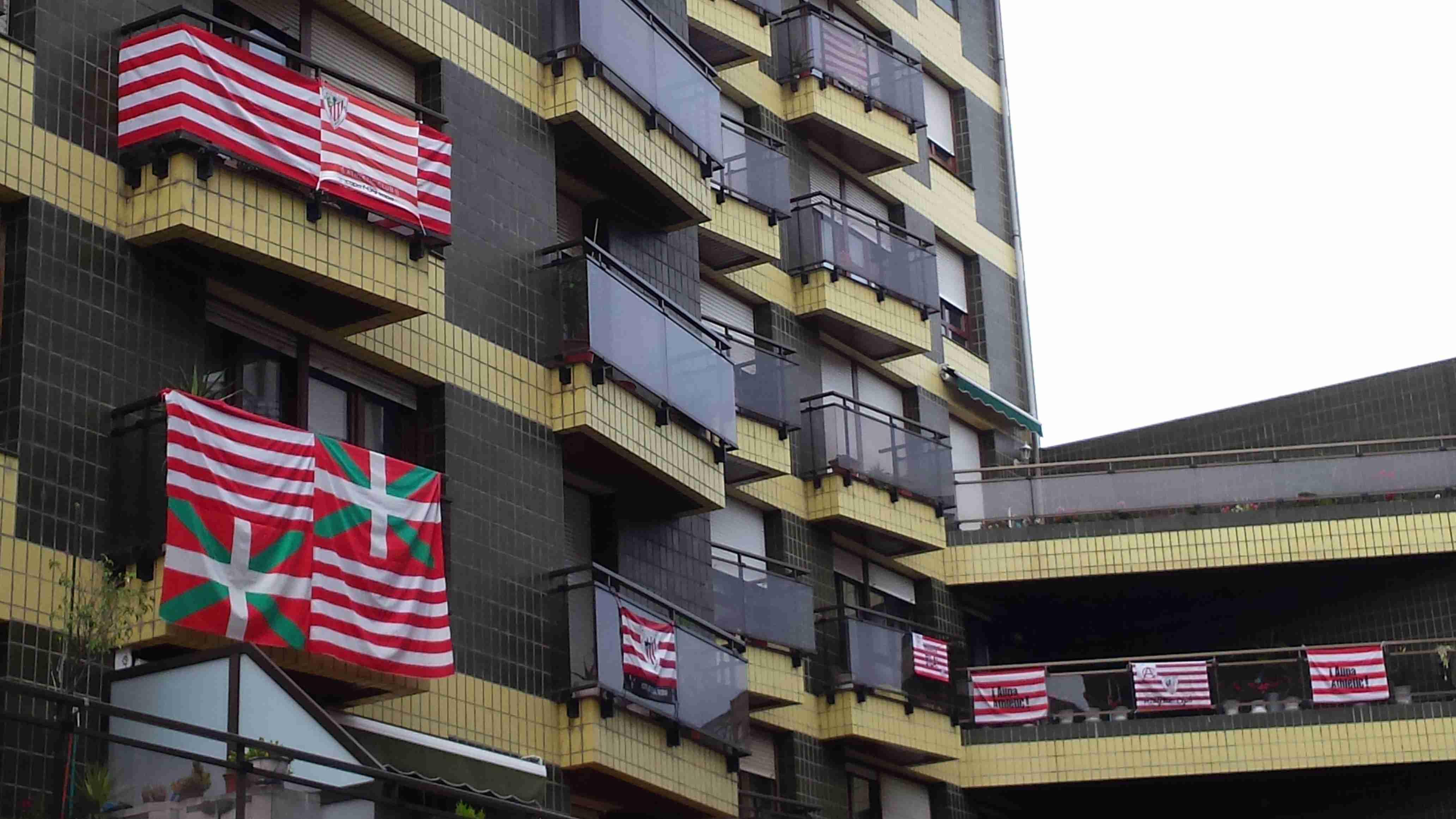 basauri-banderas-nafarroa-kalea