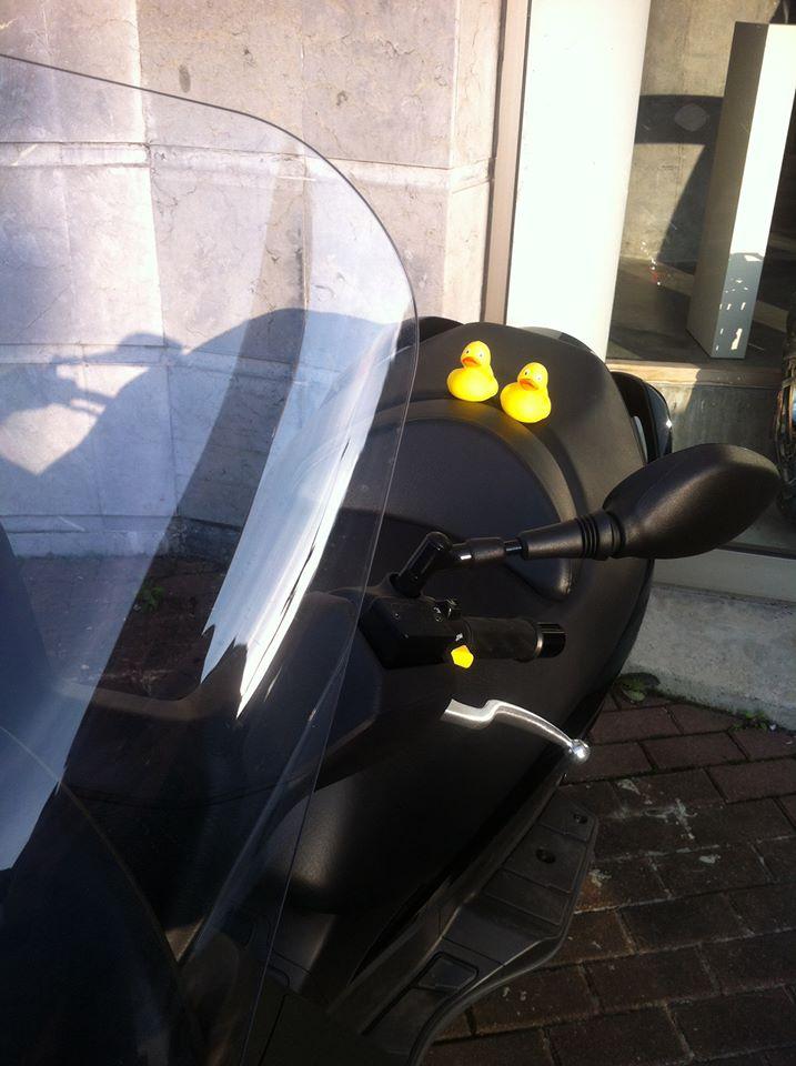 Lourdes se llevó sus WOPatos en moto para casa... No podían más...