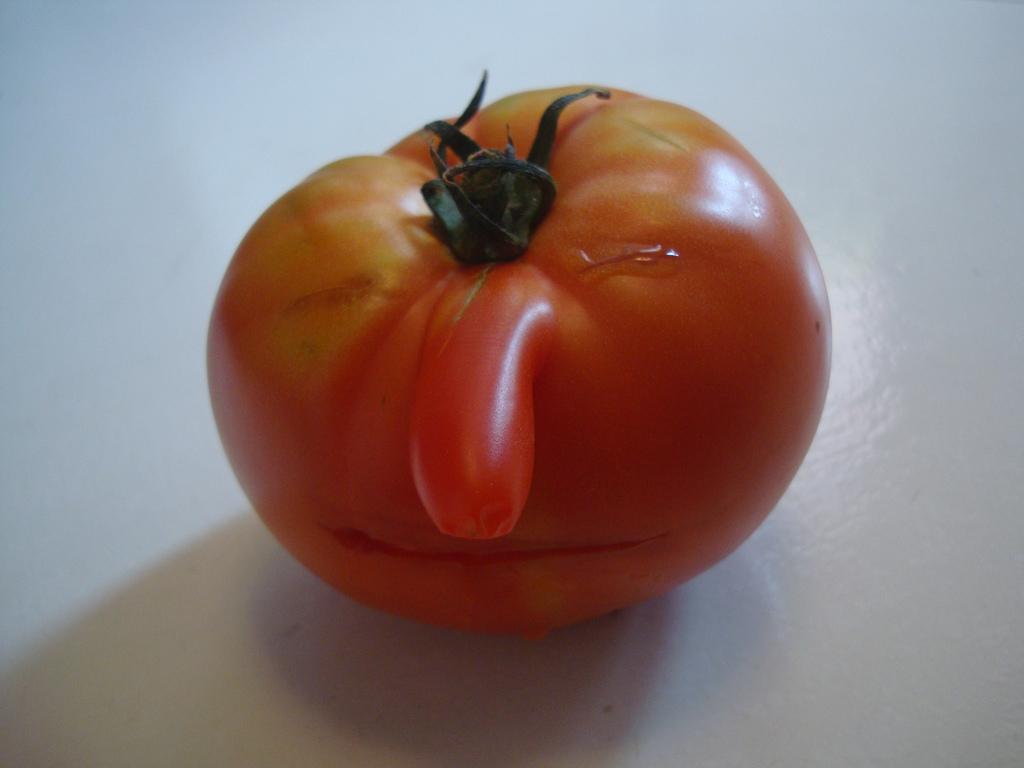 Un tomate con mucha gracia carnavalesca. Foto: Ana Miranda