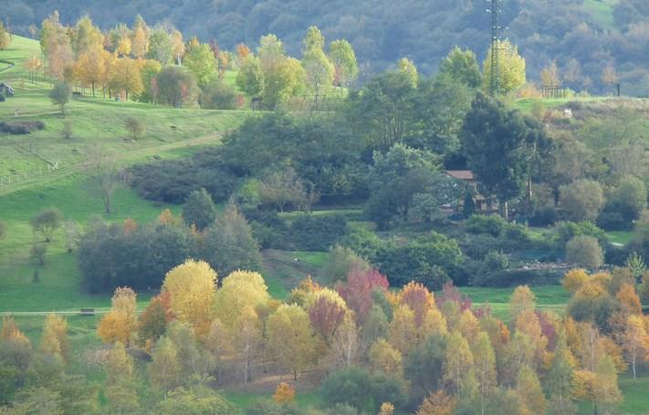 Parque de la Peña. Foto: Juan Diaz