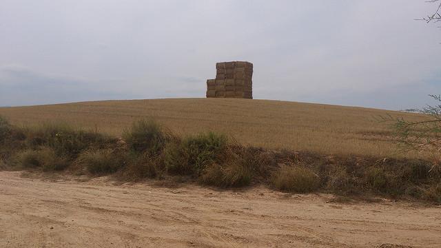 Tierras de Ablitas. Imagen de archivo: Imanol Sangüesa