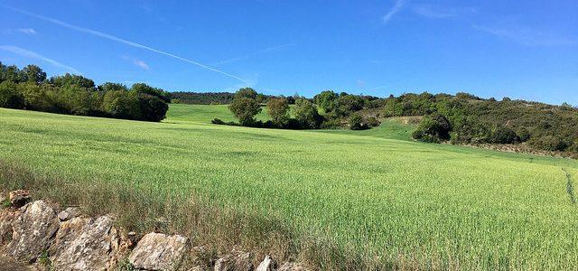 Crean una aplicación web con los mapas de los cotos de caza de Navarra