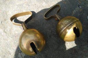 Un par de campanillas. Foto: E. Lotina