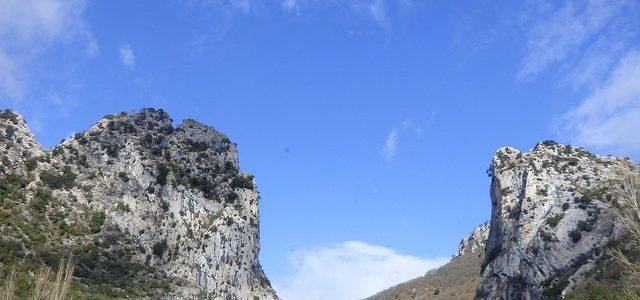 Casi 200.000 euros para mejorar el hábitat de las especies cinegéticas en Navarra