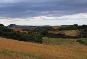 Larraga (Navarra). Foto de archivo: José María Vega