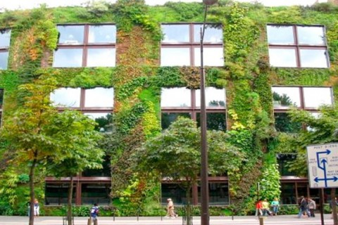 fachadas-verdes