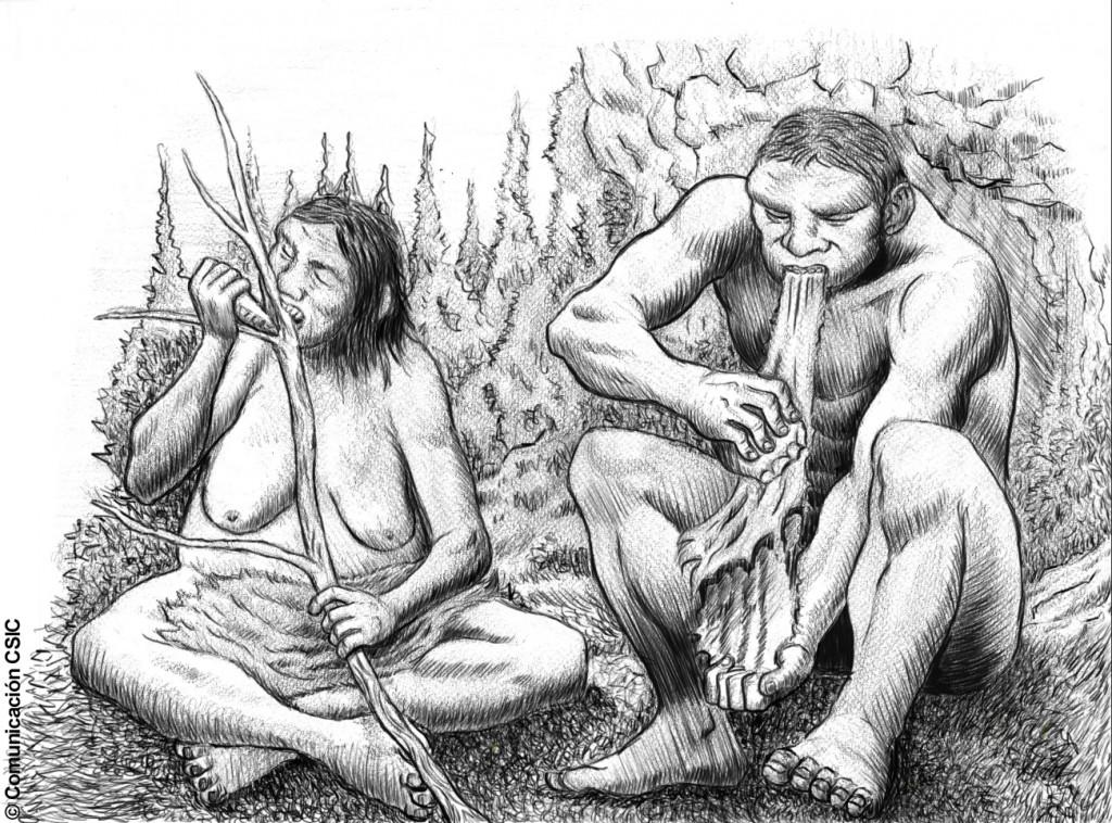 ilustracion 2