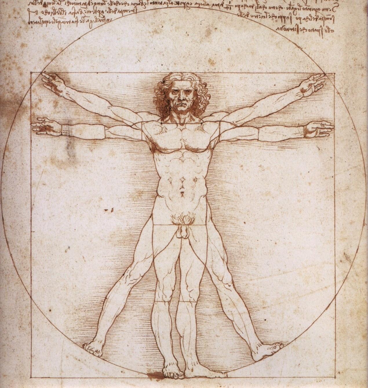 Asombroso Anatomía Masculina Dibujo Adorno - Imágenes de Anatomía ...