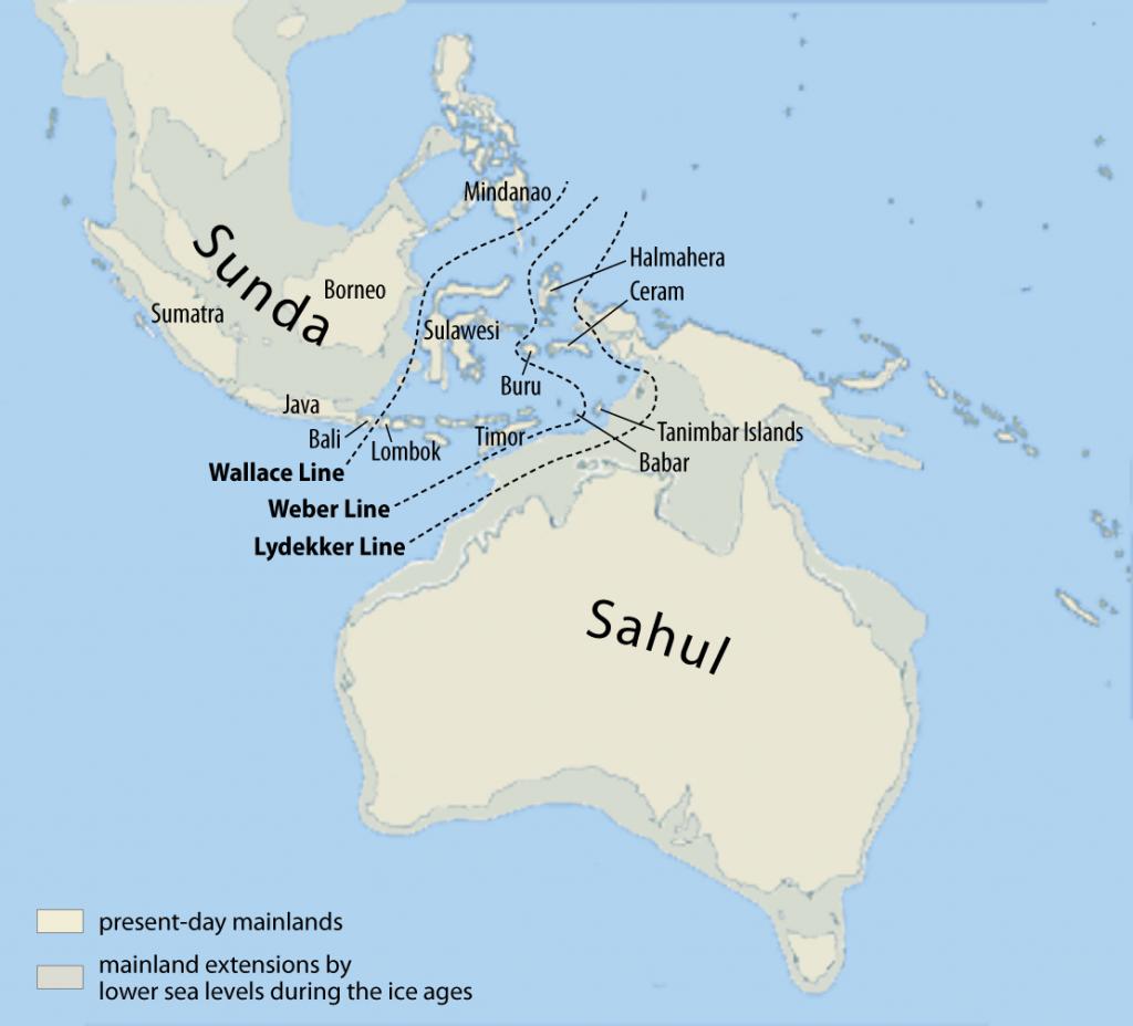 Mapa de Sahul (Papúa-Nueva Guinea, Australia y Tasmania) ante de la elevación del nivel del mar que aisló a la población de Tamania tra el último periodo glaciar.