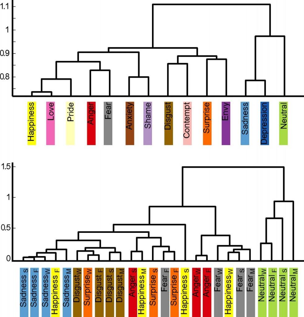 Agrupaciones de los estados emocionales en función de la similitud en las sensaciones corporales que provocan.