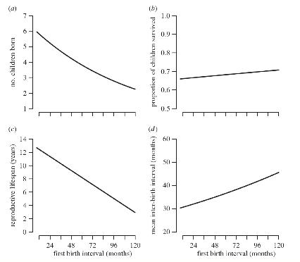 Relación entre diferentes variables demográficas y el intervalo entre casamiento y primer alumbramiento