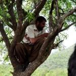 Vive subido a una rama porque su mujer le fue infiel y no le pide perdón