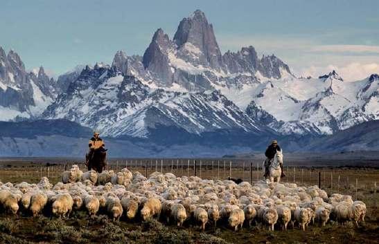 Patagonia. Foto: Luis Alberto Franke.