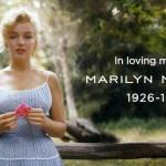 50 años y 1 día sin Marilyn
