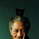 """Morgan Freeman y su """"amor"""" por la Marihuana"""