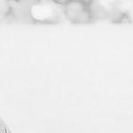 Emily Watson. Premio Donostia del Zinemaldia