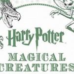 Lanzan un libro para pintar el mundo mágico de Harry Potter