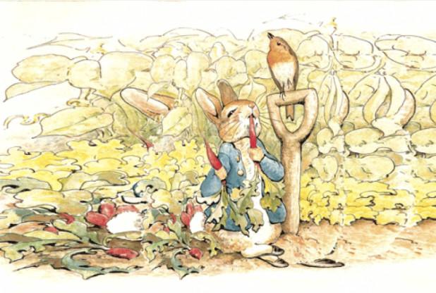 Petter Rabbit