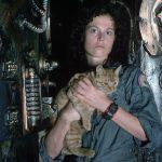 Jones & Ripley