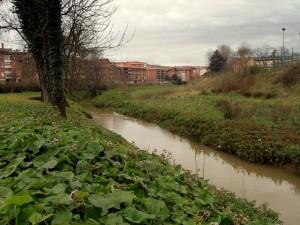 Rio Gobela a su paso por Fadura. Foto: Juan Luis Albaizar
