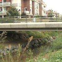 Puente sobre el Río Gobela Imagen de archivo: EITB