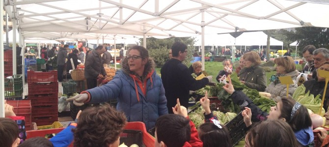 Fomento del consumo de frutas y verduras en centros escolares