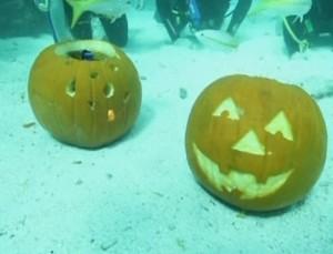 Hombre, esto igual es demasiado, ¿no?, debajo del agua y todo... Pero no deja de ser Halloween... Foto: EiTB.
