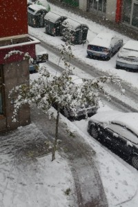 Nieve en Antsoan. Foto: Maite Casado