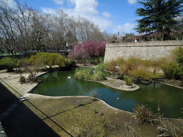 El Parque de Taconera. Foto:Araceli Markotegi