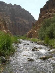 Wadi_Mujib_4 (2)