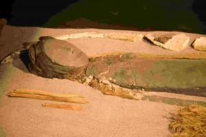 San Miguel de Azapa Archaeological Museum