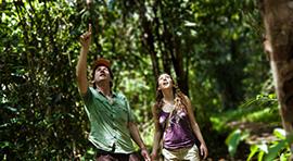 Naturaleza y selva
