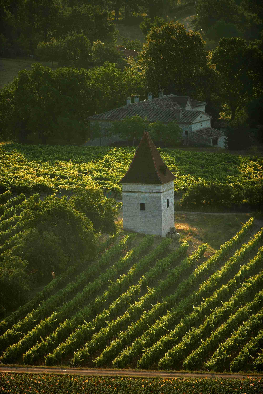 Otoño entre viñedos en Midi-Pyrénées, el viñedo de Gaillac