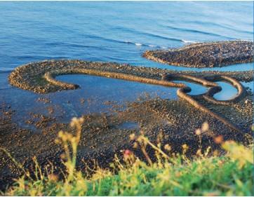 TAIWAN, Penghu: Diversidad de recursos marinos