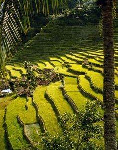 Filipinas: ¡Mabuhay a Banué!
