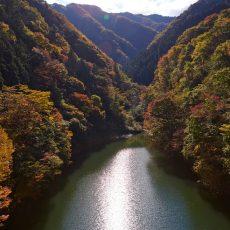 JAPÓN: Disfrutar de la naturaleza tokiota en Okutama