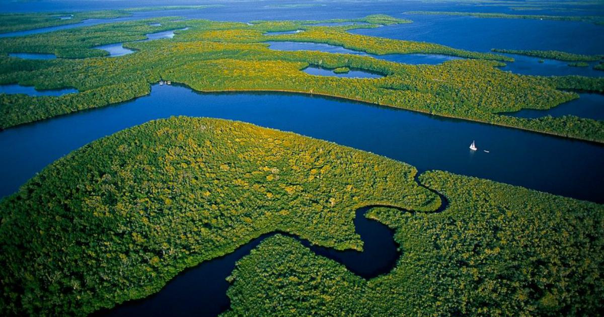 COLOMBIA: El Amazonas, destino natural único