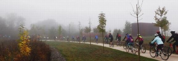 Visitas guiadas en bicicleta. Foto: vitoria-gasteiz.org