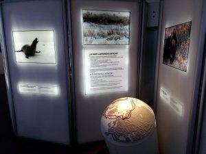 Exposición 'El Ártico se rompe'