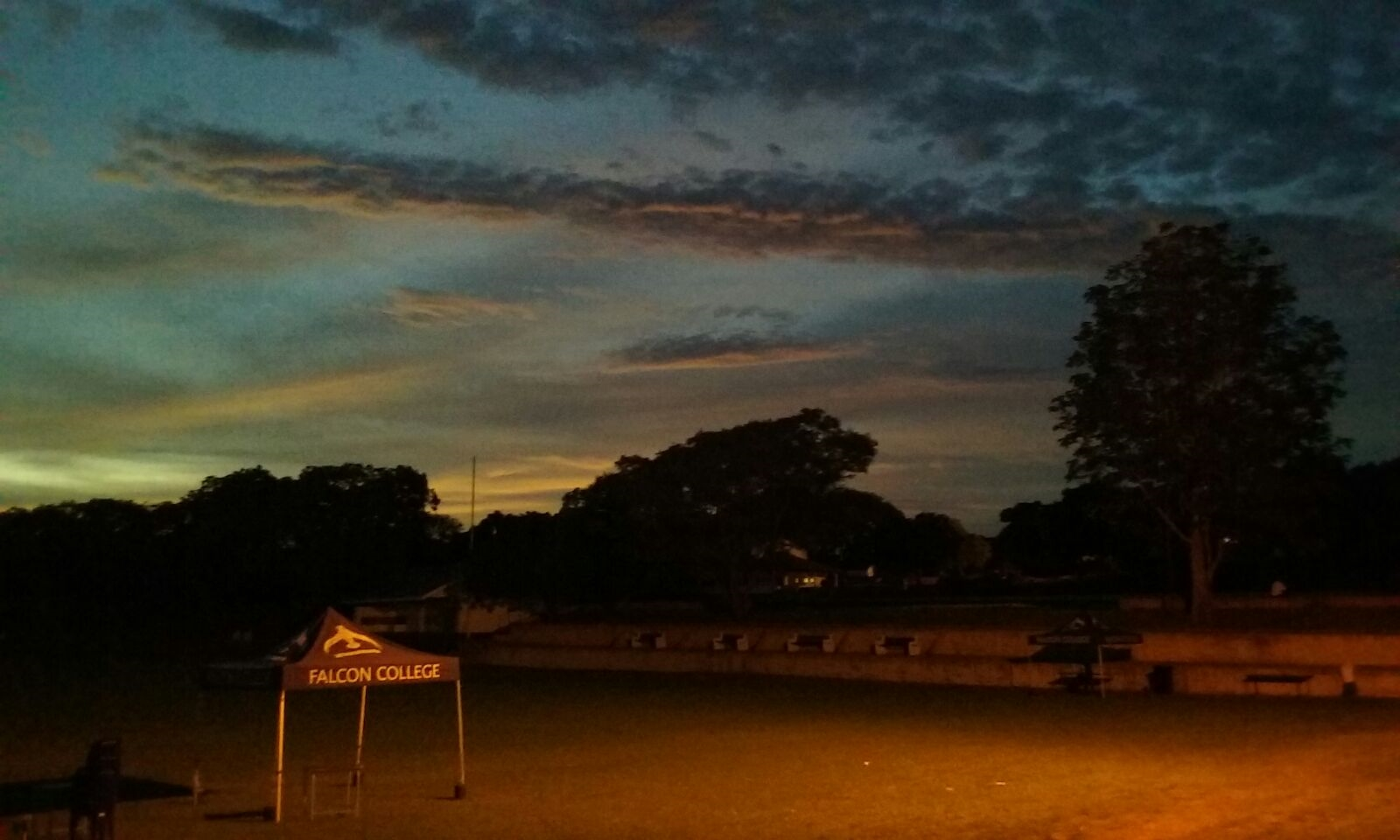 tony_noche